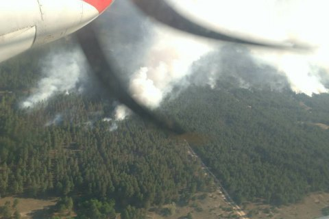 У Херсонській області до охорони лісів залучать військових