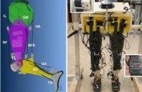 Ученые собрали робота, который воспроизводит походку человека