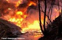 В США лесные пожары уничтожили более 120 домов