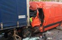 Лось стал причиной ДТП со смертельным исходом в Житомирской области