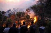 МИД: Информации об украинцах, пострадавших при пожарах в Израиле, не поступало