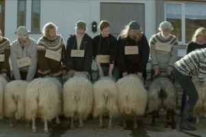 """В """"Особом взгляде"""" Каннского кинофестиваля победил исландский фильм"""