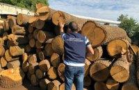 Прокуратура обшукує лісові господарства і підприємства-контрагенти в Харківській області