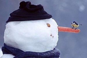 Киевлянам предлагают лепить снеговики для борьбы с наводнением