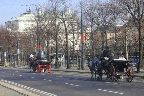 Поліція Австрії заявила про запобігання теракту у Відні