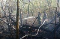 На Трухановом острове в Киеве вспыхнул пожар