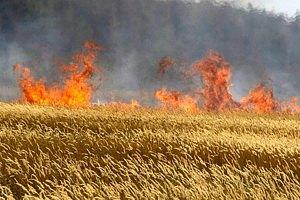 В Украине - опасность пожаров
