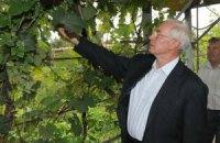 Азаров обещает обеспечить стабильность на рынке продовольствия