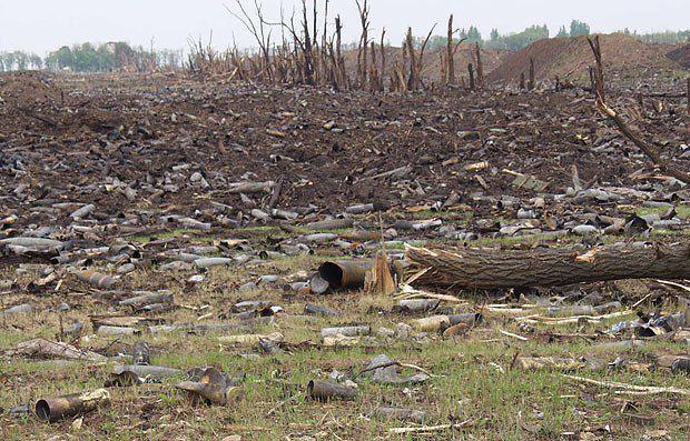 Так МО Украины «засеяло» поля под Новобогдановкой