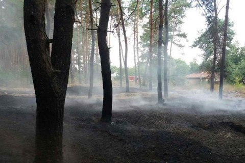 У Полтавській області за добу загасили дві лісові пожежі