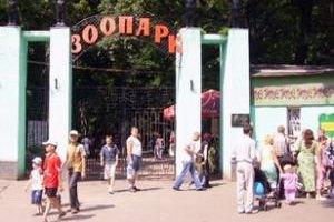 Киевский зоопарк хотят перенести на Труханов остров