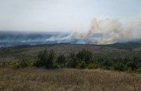"Пожежа у ландшафтному парку ""Донецький Кряж"" знищила 90 гектарів лісу"