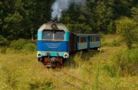 """""""Укрзалізниця"""" планує демонтувати частину вузькоколійки в Закарпатській області"""