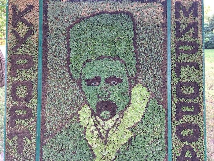 Клумба з портретом Шевченка у Миргороді