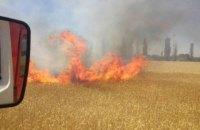 В Николаевской области горели 99 га поля с пшеницей