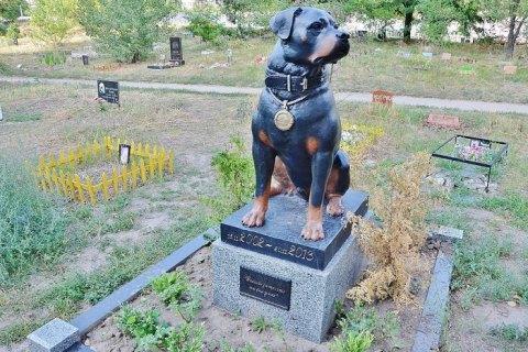 Киевские власти решили построить возле Троещины кладбище для животных