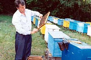 Ющенко хочет от Януковича Апимондии