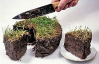 Эксперты назвали стоимость украинских агрохолдингов
