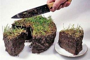 Янукович одобрил продление моратория на продажу сельхозземель