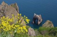Крым передал Карадагский заповедник и двух дельфинов в собственность России, - СМИ
