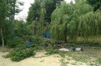 Кількість загиблих від падіння дерева на базі відпочинку біля Харкова зросла до двох