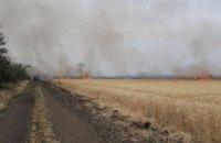 У Запорізькій області згоріло 20 га пшениці