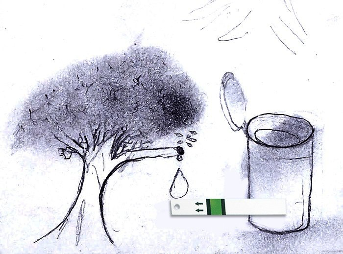Малюнок Михайла Ковалевського