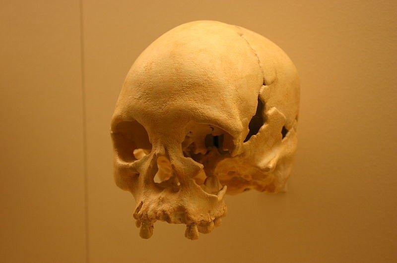 Лузия, древнейшие человеческие останки, ок. 11,5 тыс. лет.