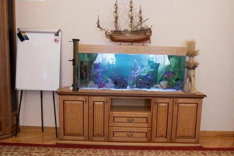 Тиха смерть рибок Холодницького