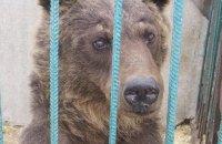 Мінприроди закликало терміново конфіскувати тварин зі звіринця в Покровську