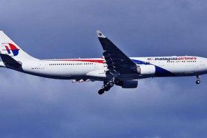 Малайзія розслідує падіння літака в Донецькій області