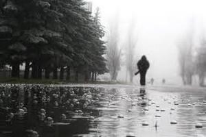 У понеділок у Києві обіцяють короткочасний дощ