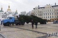 В Киев привезли главную елку страны
