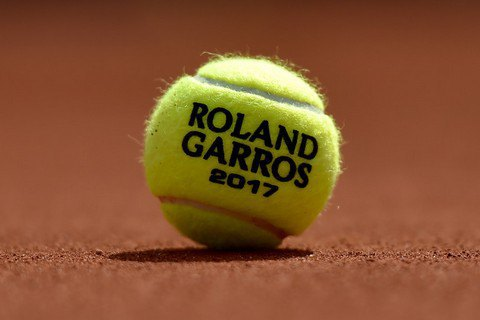 На Roland Garros теннисистка не смогла завершить розыгрыш из-за атаковавших её голубей