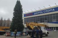 В Черноморске с главной елки города украли гирлянду