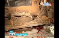 В России уничтожили 225 килограммов турецких мандаринов