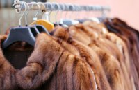 В Калифорнии подписали законопроект о запрете продажи и изготовления одежды из меха