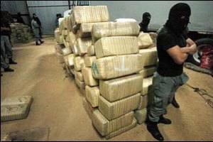 Борьба с наркотиками будет одной из тем саммита G8