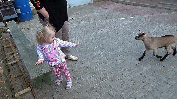 Підопічна центру Катя Бойко знайомиться з козеням