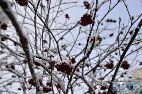 Во вторник в Киеве до +4 градусов и небольшой мокрый снег с дождем