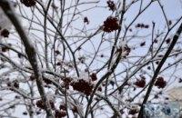 У вівторок у Києві до +4 градусів і невеликий мокрий сніг з дощем