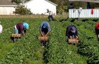 В Украину из стран-партнеров начали поступать запросы о сезонных рабочих