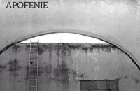 Американський журнал Apofenie видасть номер, присвячений українській сучасній літературі