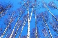 На українців чекає незначне потепління