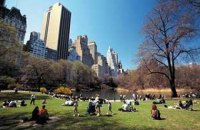 В США обвинили трех человек в попытках организации терактов в Нью-Йорке