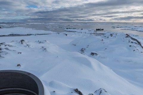 Антарктида перестала бути єдиним континентом без коронавірусу