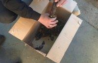 На кордоні з Польщею у громадян України та Туреччини вилучили 35 кг бурштину