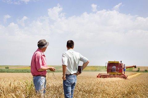 Кабмин утвердил новый профессиональный праздник День фермера