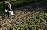 Фермеры выступают за проведение референдума по земельному вопросу