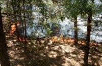 Из-за обстрела боевиков под Северодонецком загорелось 15 гектаров леса